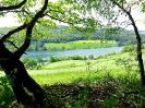 Naturpark Diemelsee_68